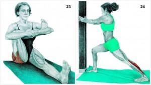 Yoga23_24-1024x576-768x432